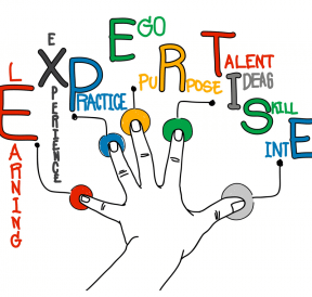 Expertise and soft skills of a group facilitator