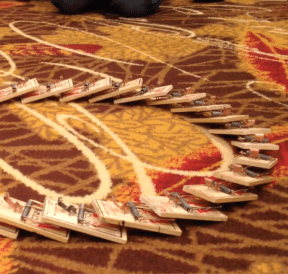 Set-up of a circle of live mousetrap dominoes