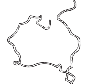 Rope configured to represent map of Australia, as seen in team-building activity called Map Making