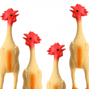 Rubber chickens preparing for Pachelbel's Canon