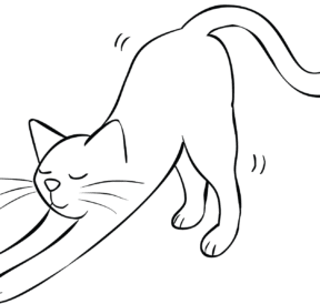 Illustration of cat stretching as part of Breathe and Stretch